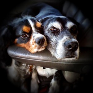 Charlie and Libby