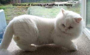 Glamerous JF Kennedy of Paz4Play aka Kenny