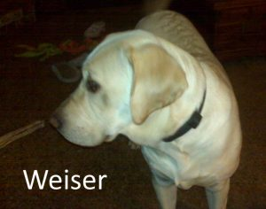 Weiser